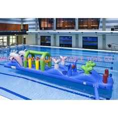 Kolorowe pontony z podwójnym delfinem 12 m Aqua Run, Blow Up Water Islands For Pool