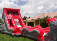 Colorful Hippo Water Slide / Inflatable Wave Water Slide With Silk Printing