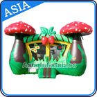 Inflatable Strawberry Bouncer And Slide Combo Games For Children