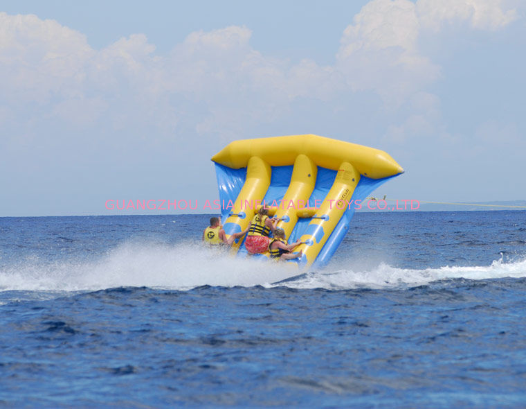 Funny Air Sealed Inflatable Flying Fish Tube with CE / UL Certificate dostawca